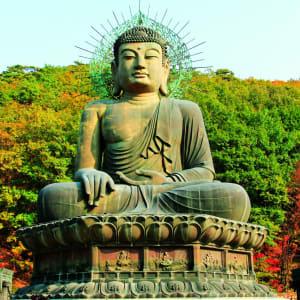 Gruppenreise «Südkorea - Land der Morgenstille» ab Seoul: Soraksan National Park Giant Buddha
