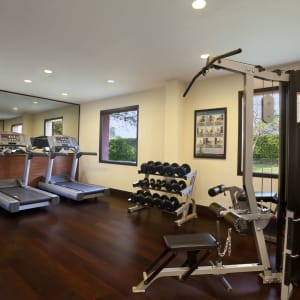Trident in Agra: Fitness Centre