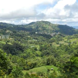 Im Hochland der Minahasa ab Manado: Sulawesi Minahasa Highlands