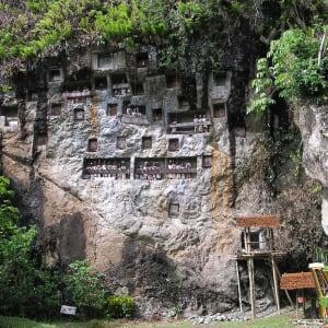 Sulawesi-Torajaland Rundreise ab Makassar: Sulawesi Toraja Lemo Graves