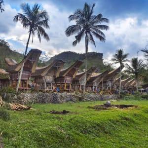 Sulawesi-Torajaland Rundreise ab Makassar: Sulawesi Toraja Tongkonan traditional village Kete Kesu