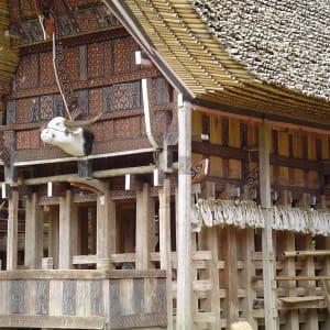 Sulawesi - au pays des Toraja de Makassar: Sulawesi Toraja Traditional House