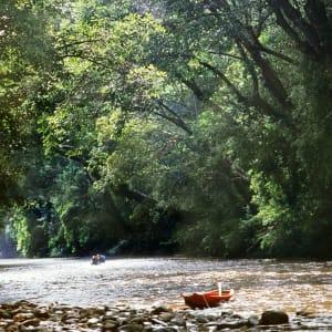 Taman Negara Nationalpark ab Kuala Lumpur: Taman Negara: beautiful jungle