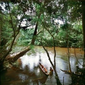 Taman Negara Nationalpark ab Kuala Lumpur: Taman Negara: by the river