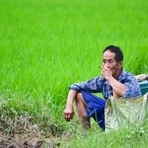 Erlebnis Südthailand ab Bangkok: Thailand: Farmer taking a rest