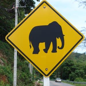 Circuit en voiture de location Triangle d'Or de Chiang Mai: Thailand: road sign