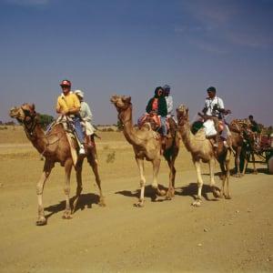 Palastromantik und Wüstenzauber ab Jodhpur: Thar Desert