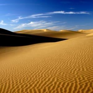 Romantisme des palais et magie du désert de Jodhpur: Thar Desert
