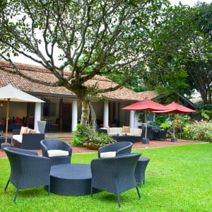 The Wallawwa in Colombo: The Wallawwa - Garden
