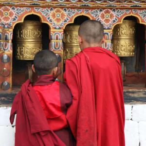 Himalaya Reise für Entdecker ab Bagdogra: Thimphu: young monks