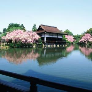 Tokio Highlights – Ganzer Tag: Tokio Garden