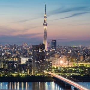 Gruppenreise «Im Reich der Sonnengöttin» ab Kyoto: Tokyo city view during sunset