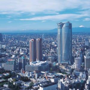 Vielfältiges Japan ab Tokio: Tokyo Cityview