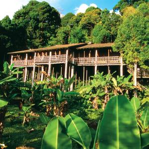 Les hauts lieux de Bornéo de Kuching: Traditional Longhouse