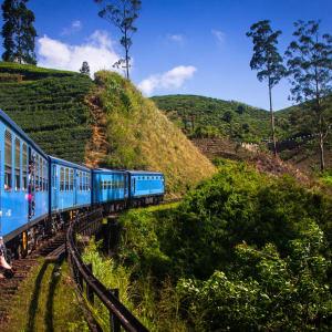 Découverte active du Sri Lanka de Colombo: train from Nuwara Eliya to Kandy among tea plantations in the highlands of Sri Lanka
