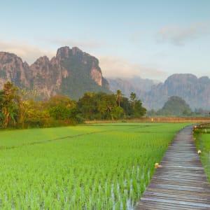 Überland von Luang Prabang nach Vientiane - 3 Tage: Vang Vieng ricefields