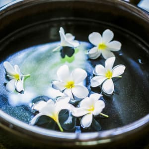 Anantara Angkor Resort in Siem Reap: Details Flower Bowl