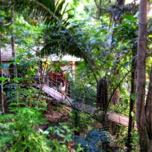 Bungaraya Island Resort in Kota Kinabalu: ECHO Wellness Spa