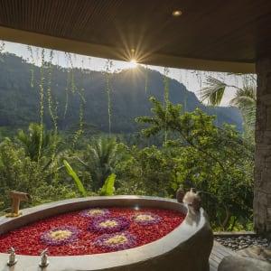 Wapa di Ume Sidemen à Ouest de Bali: Flower Bath Tub