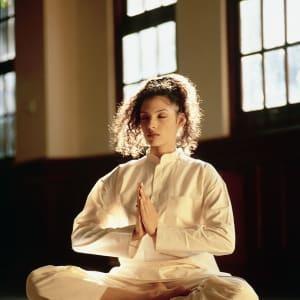 Ananda In The Himalayas in Rishikesh: Meditation