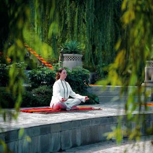 Ananda In The Himalayas in Rishikesh: Meditation_Amphitheatre