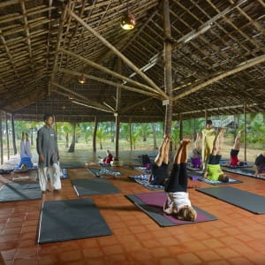 Nattika Beach Ayurveda Resort in Kochi: Yoga