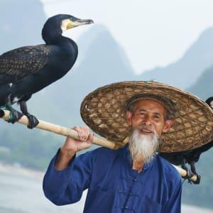 Rizières du cieletreliefs étranges de Guilin: Yangshuo: Fisherman