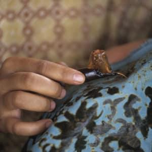 Java-Bali pour les fins connaisseurs de Yogyakarta: Yogyajarta famous for Batik