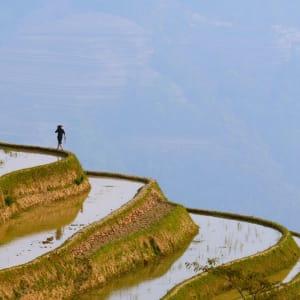 Yunnans unbekannter Süden ab Kunming: Yuanyang rice terraces