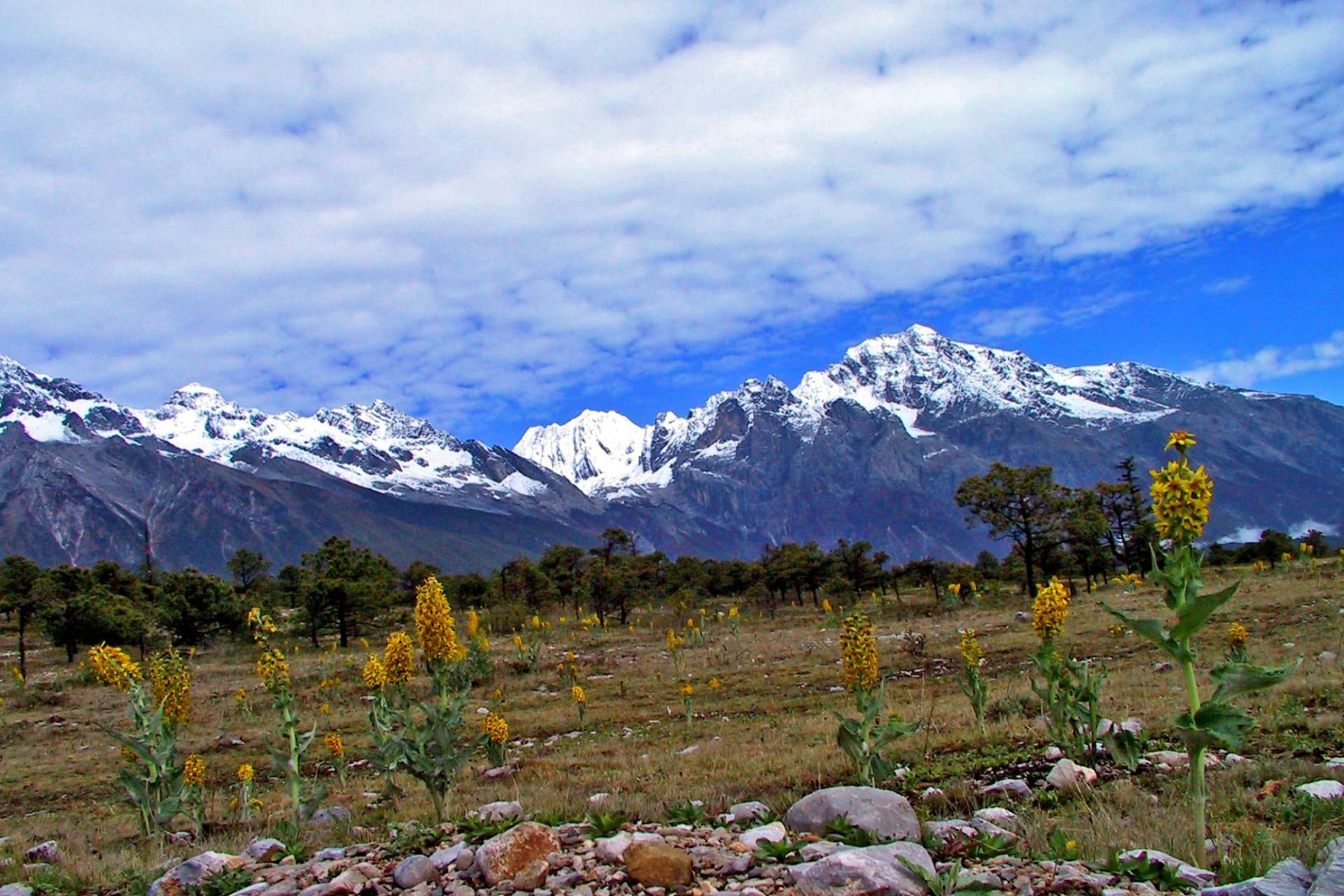 Lijiang: Snow Mountain