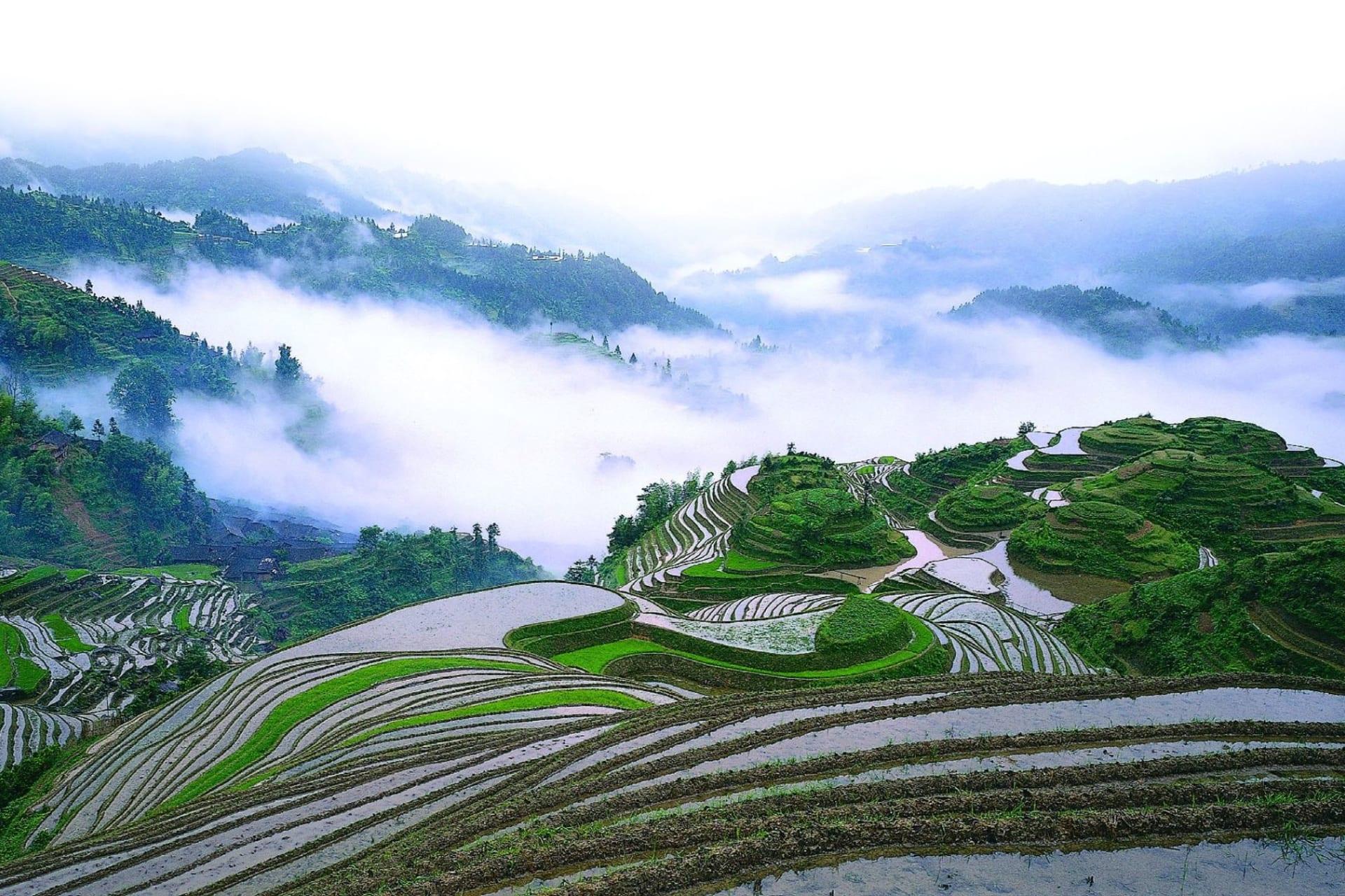 Longsheng: Terrace