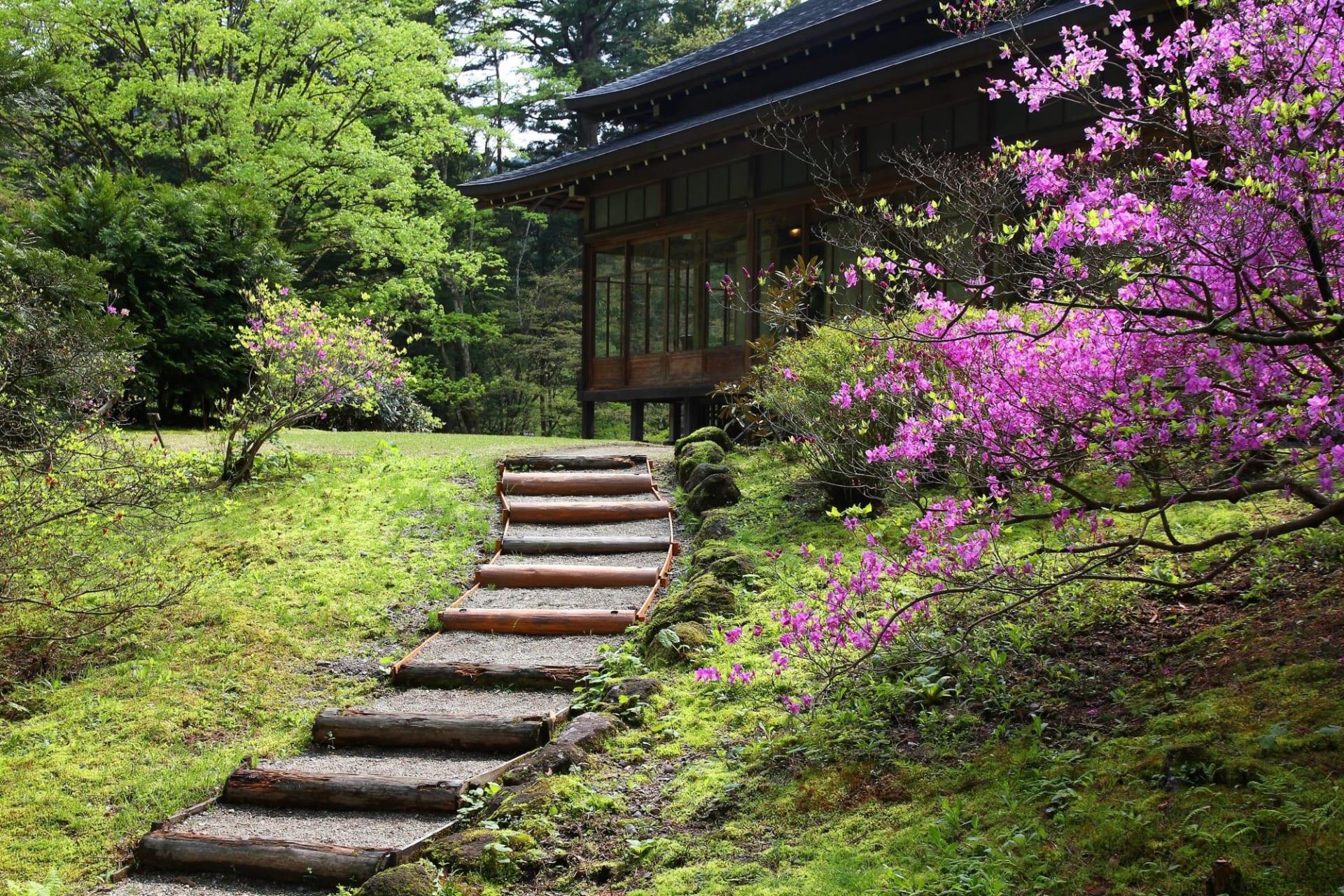 Nikko Tamozawa Villa