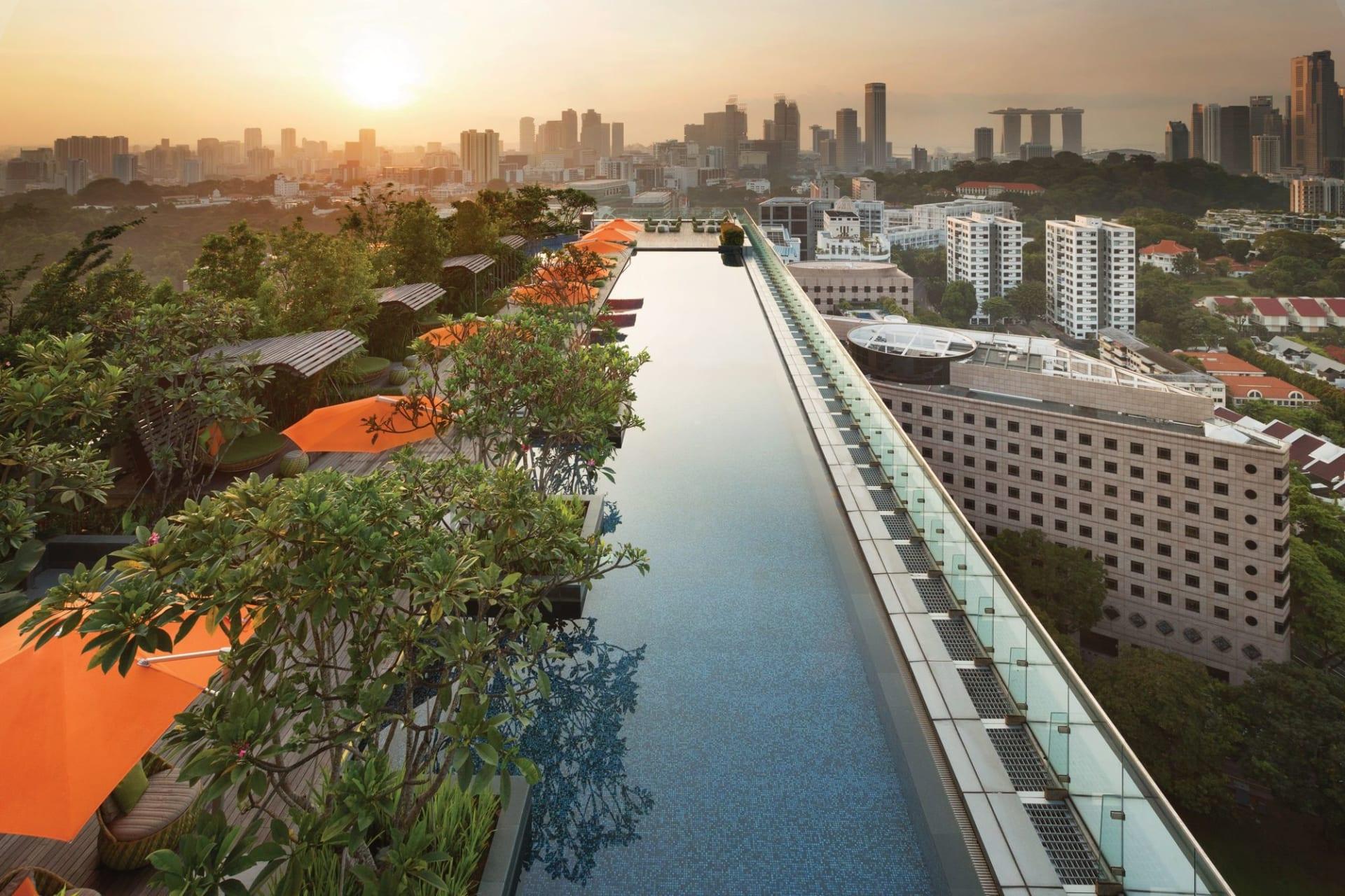 pool: Rooftop Infinity Pool