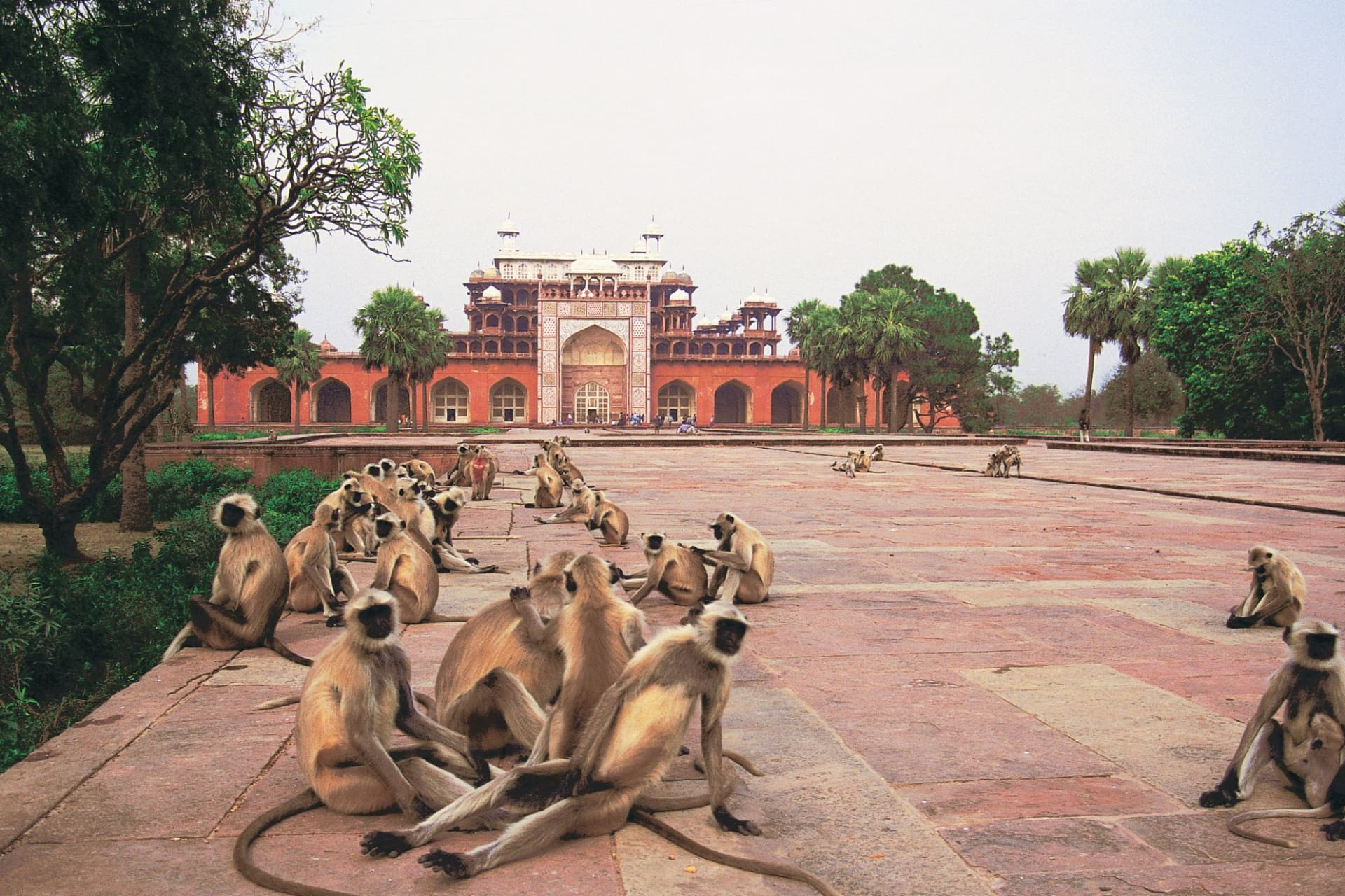 Sikandra: Akbar's Tomb