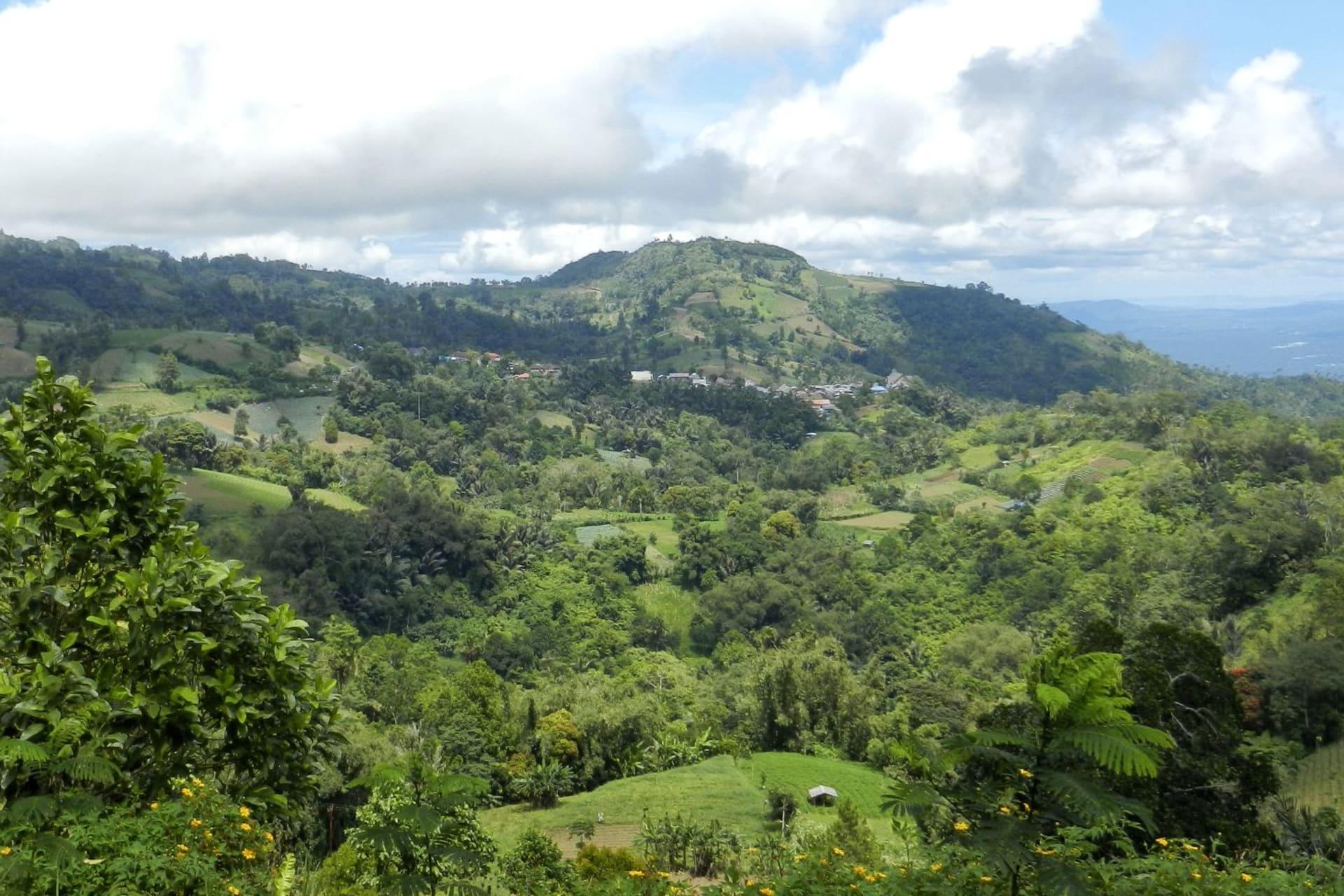 Sulawesi Minahasa Highlands