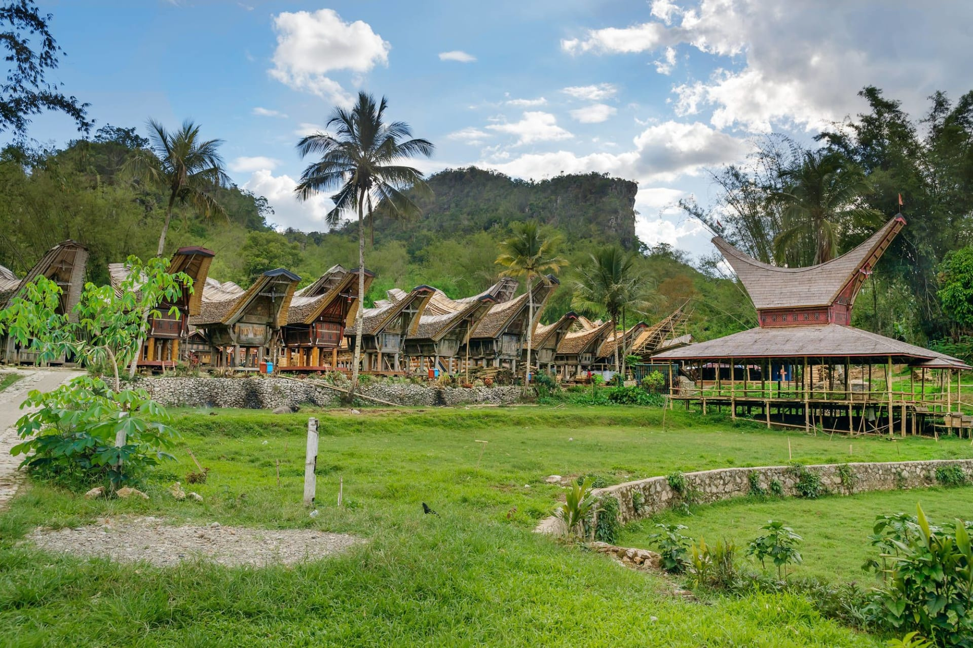 Sulawesi Toraja Tongkonan traditional village Kete Kesu