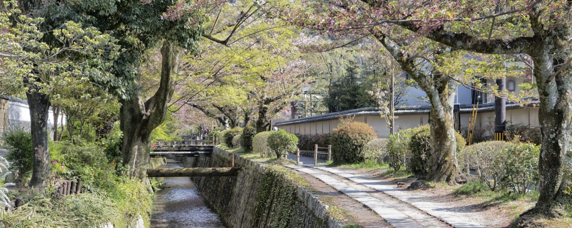 Kyoto de son propre chef, sans véhicule, une journée: Kyoto
