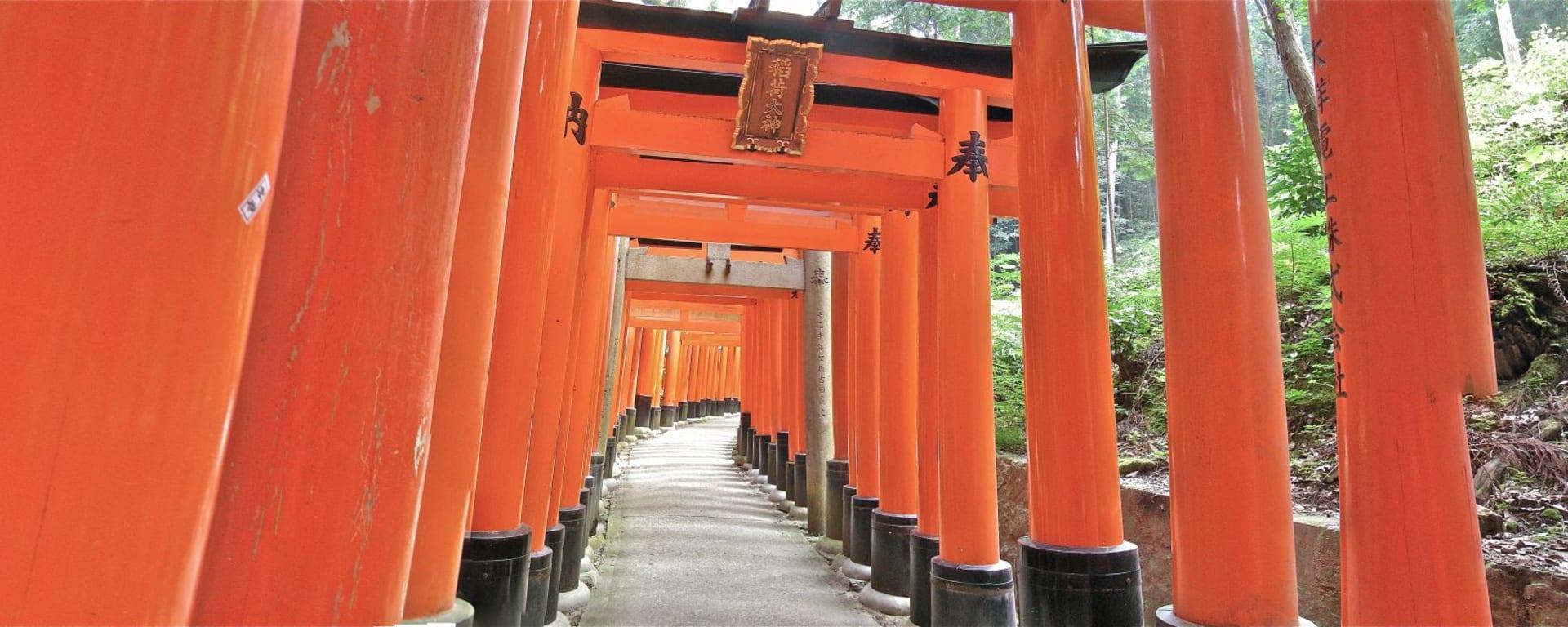 Au pays du soleil levant de Tokyo: Kyoto Torii Gates