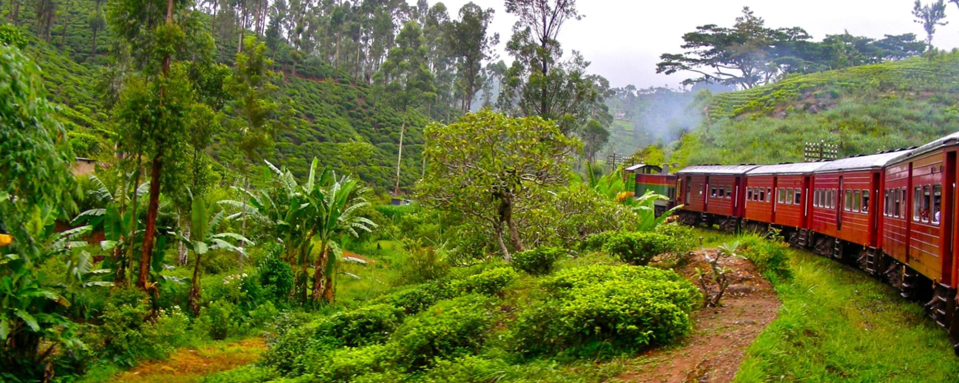Sri Lanka Reisen und Ferien von tourasia: Nuwara Eliya train ride