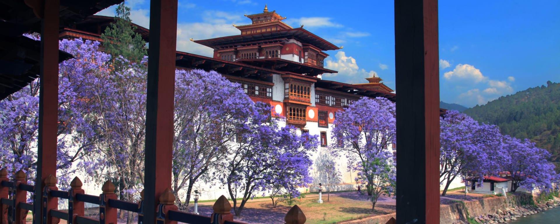 Wissenswertes zu Bhutan Reisen und Ferien: Punakha: Dzong