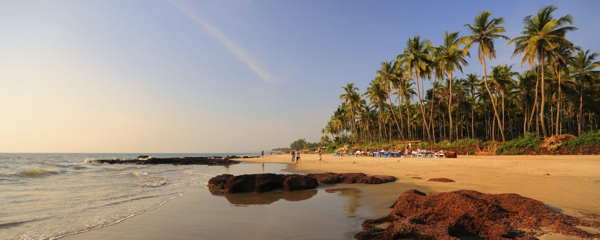 Vielfältiges Goa: Morjim Beach in Goa
