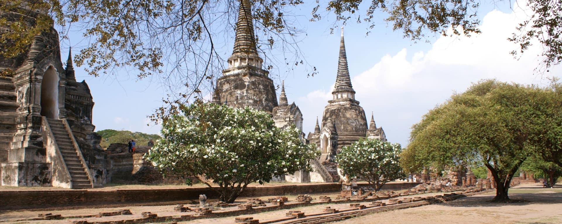 Natur & Kultur rund um Bangkok: Ayutthaya:
