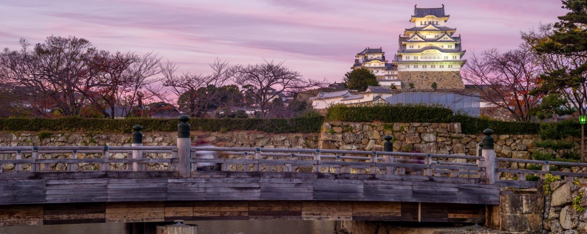 Le Japon sur de nouveaux chemins avec prolongation de Osaka: Himeji Castle