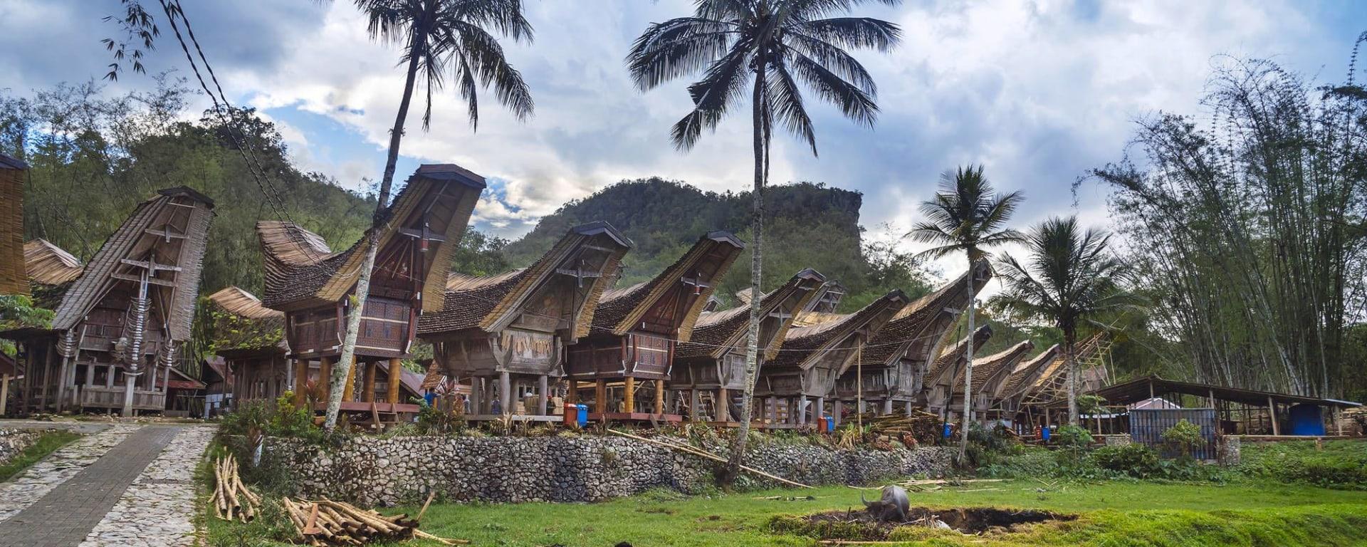 Sulawesi - au pays des Toraja de Makassar: Sulawesi Toraja Tongkonan traditional village Kete Kesu