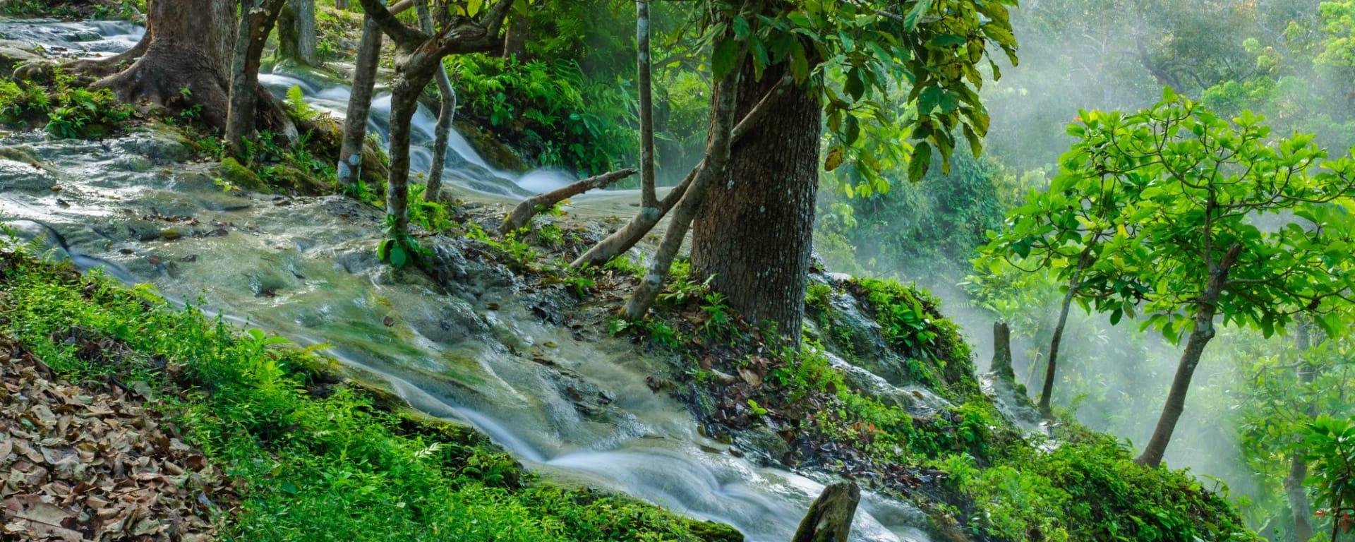 Nature & éléphants dans le nord de la Thaïlande de Chiang Mai: Northern Thailand Mae Tang Valley Bua Tong Waterfall