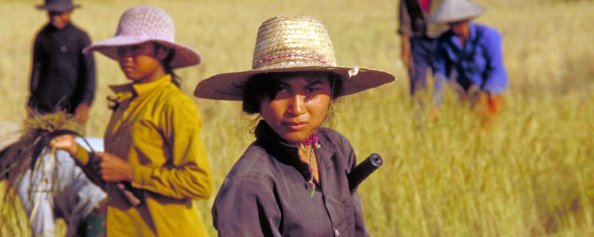 Traversée de Phnom Penh à Angkor: Farmers at work