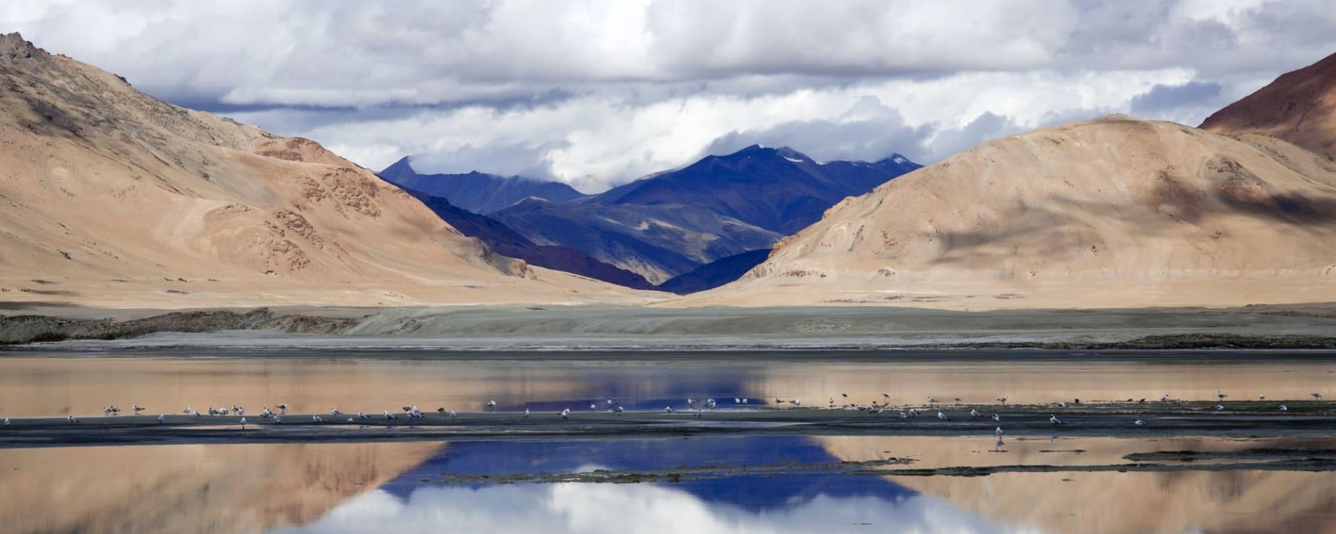 Les montagnes spectaculaires de Ladakh de Leh: Ladakh: Tso Kar Lake