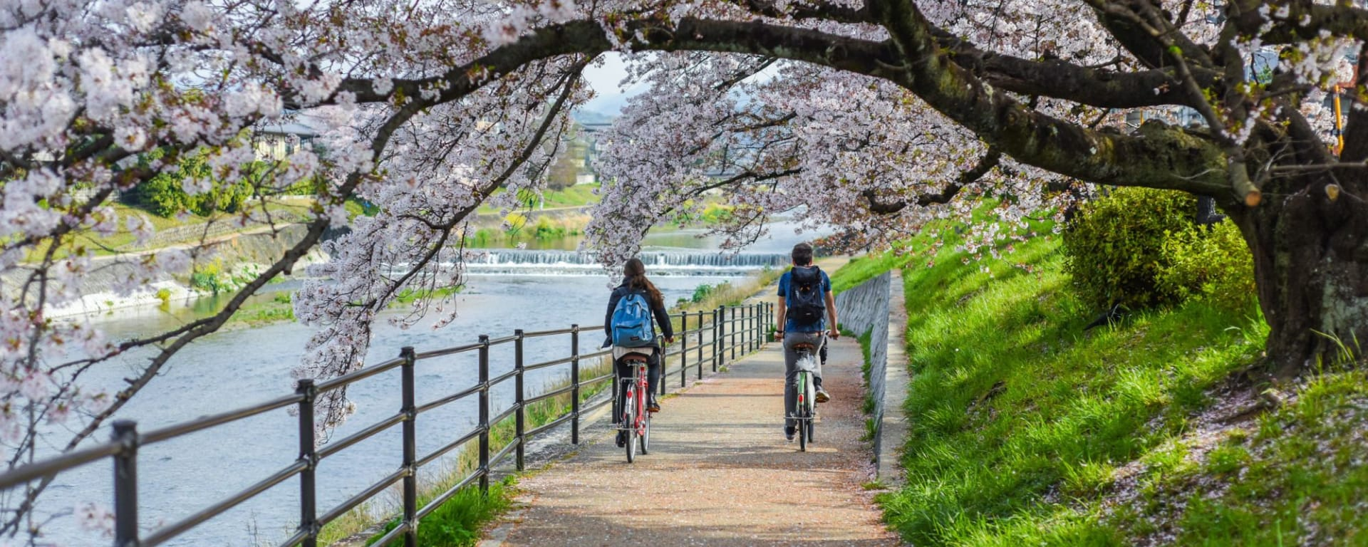 Côté méconnu de Kyoto à vélo - demi journée: Kyoto Kamokawa River