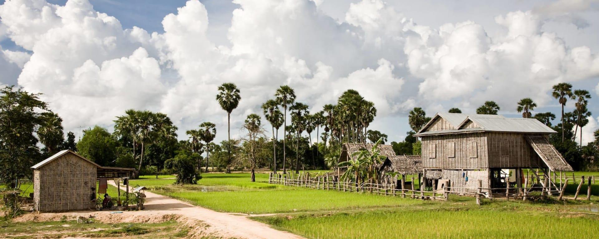 Battambang - le grenier à riz du Cambodge (Siem Reap - Ko Chang): Battambang rural aerea
