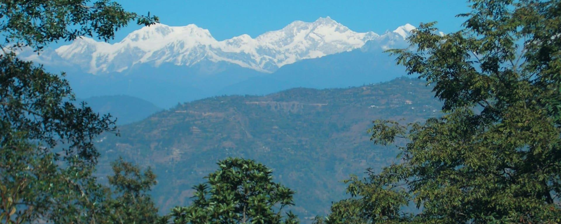 Glenburn Tea Estate à Darjeeling: View of Mountains from Glenburn